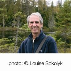 Michel Sokolyk