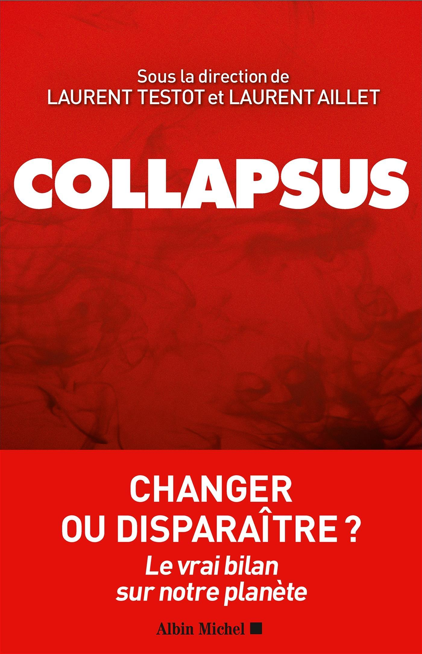 Image de couverture (Collapsus)