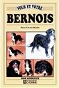 Vous Et Votre Bernois