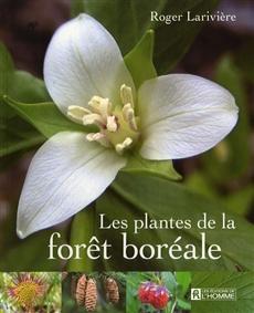 Les plantes de la forêt boréale