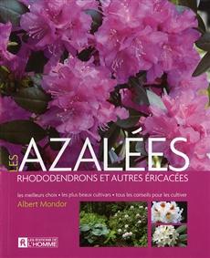 Azalées, rhododendrons et autres éricacees