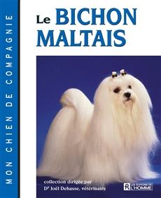 Le bichon maltais