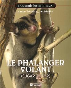 Phalanger Volant -Le