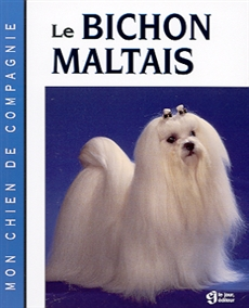 Le Bichon Maltais - NULL