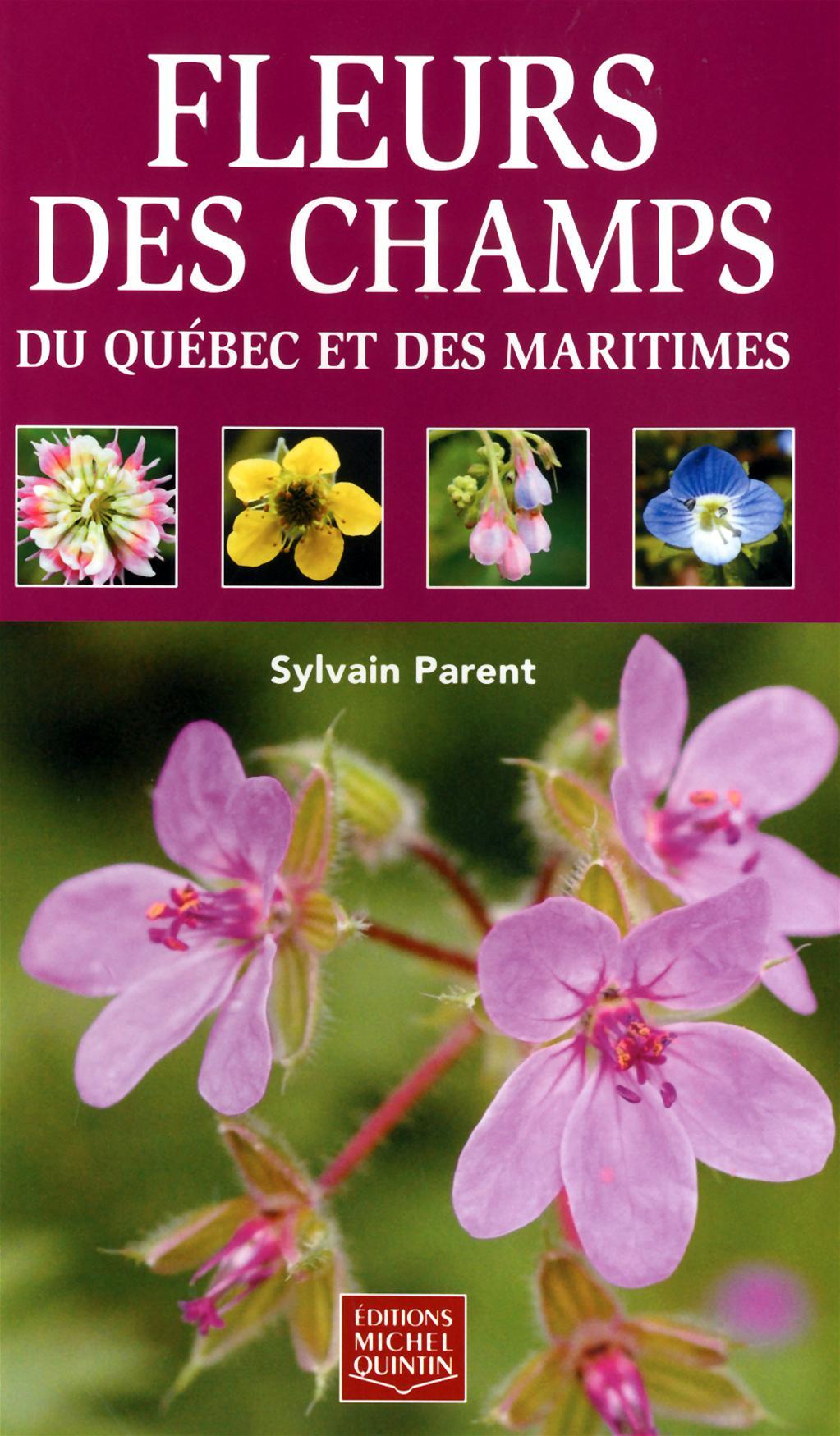 Fleurs des champs du Québec et des Maritimes